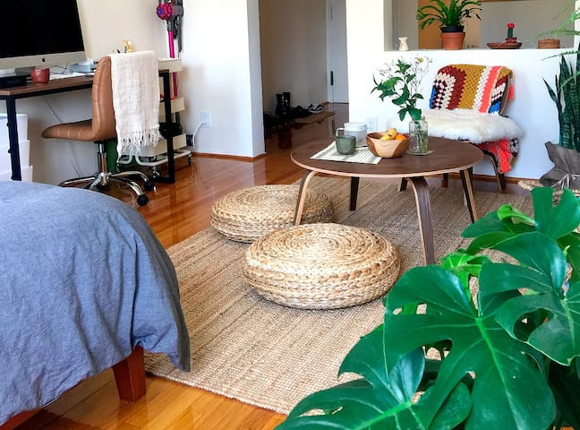 Sunny & Beautiful 1br apt in heart of Lower East.