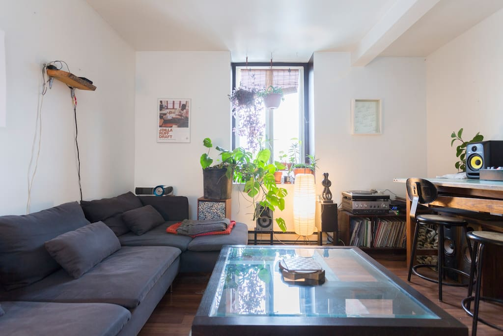 The living room is big and open and has got tons of plants and a nice big mirrored skylight!