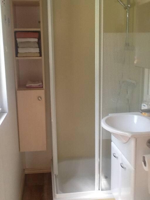 Badkamer met douche, wasbak en toilet
