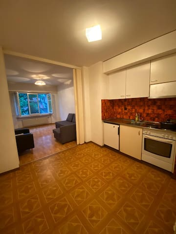 Entire 2.5 Rooms lovely apartment, center of Basel