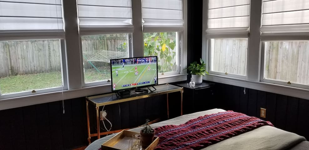 Lots of windows overlooking the fenced backyard with hammock.   TV with basic cable - log into your streaming accounts if you like.