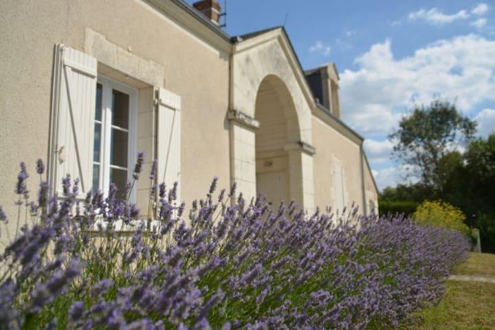 Gîte de l'Ecluse - Saint-Aignan - Dom
