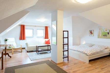 Ferienwohnung Pirna - gross und gemütlich - Pirna - Osakehuoneisto