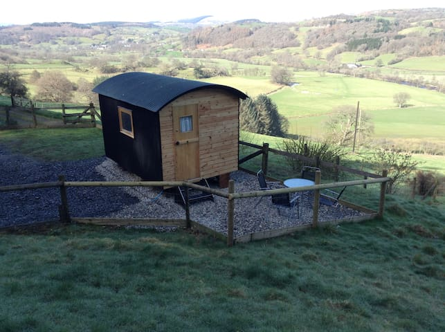 "Shepherds Hut "" Megan""at yn-y-fron"