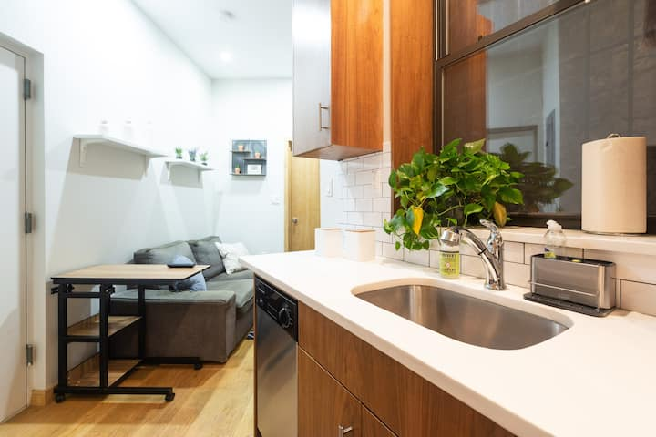 Shiny New charming  2 bds 1.5 baths in Chinatown