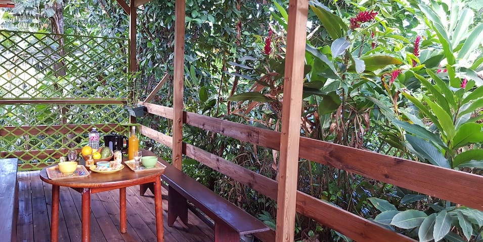 Au  jardin de la petite mangrove