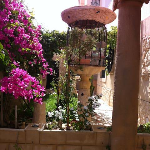 Entrée de l´appartement très joliment décorée, avec des plantes, et des fleurs