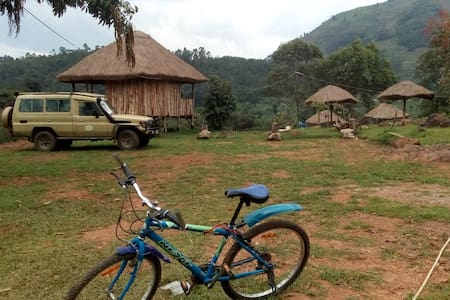 Bwindi nature view campsite