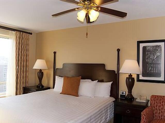 1 Bedroom Condo in Alexandria near D.C.! - Alexandria - Condominium