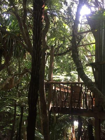 Serene private Treehouse - Karekare - 樹屋