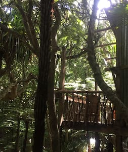 Serene private Treehouse - Karekare