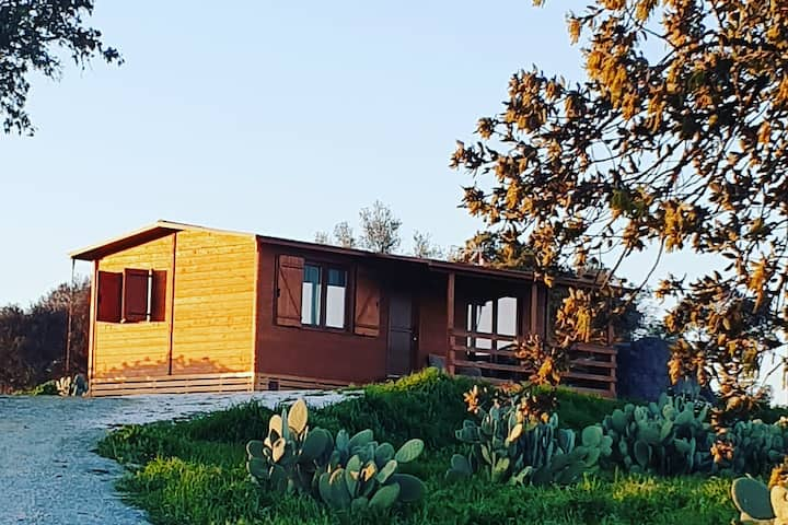 Nature Houses by Alentejo              Bungalow T2