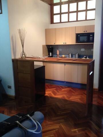 ESTUDIO EQUIPADO/FULL EQUIPPED STUDIO Z.14 - Guatemala - Wohnung