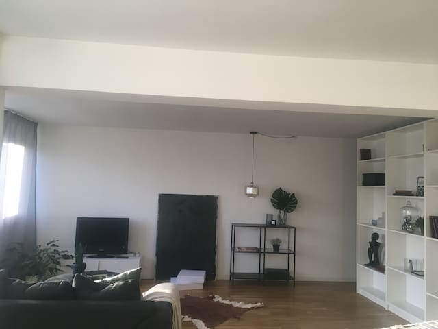 Nice big apartment - Rødovre