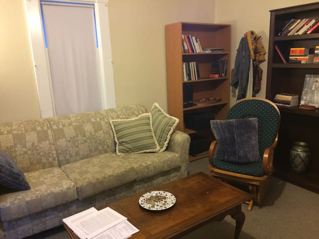 Location! A cozy, clean and bright one bedroom!! - Ann Arbor - Apartment