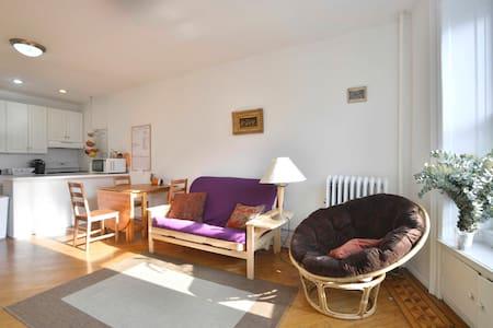Bohemian Abode @Prospect Park - Brooklyn - Apartment