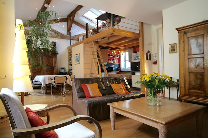 Loft/apt 1970sqft - Heart of Paris