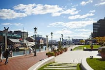 The Seaport Neighborhood Views