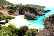Παραλία Φονέα , τα πρασινογάλαζα νερά στα οποία καθρεφτίζονται τα φουντωτά δέντρα που της προσφέρουν απλόχερα τη σκιά τους, τα μεγάλα λευκά βότσαλα και οι επιβλητικοί βράχοι στο πίσω μέρος της, δηλώνουν ότι πρόκειται για μία μοναδική παραλία.