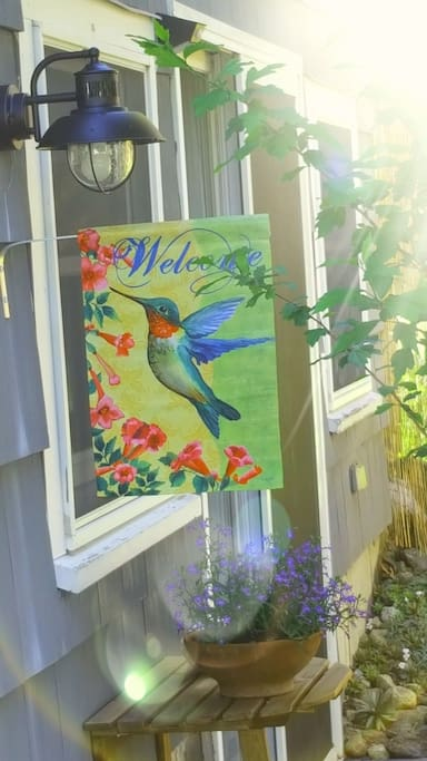 Welcome to the Hummingbird Suite