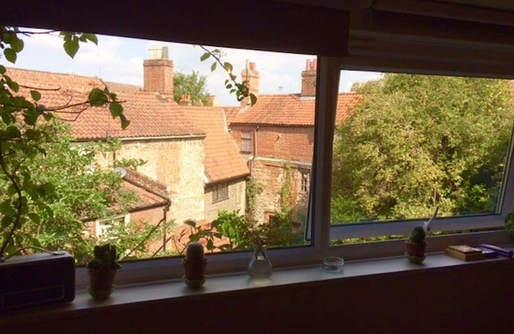 Views from living room of the rooftops of old Norwich lanes and churches.