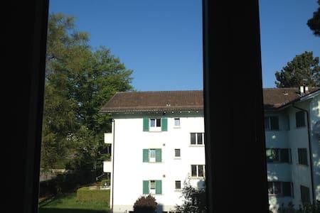 Apartment  close to the airport - Kloten