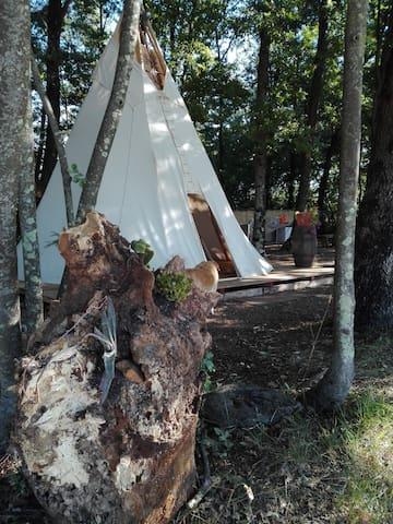 Glamping la quercia - Montelupo fiorentino - Tepee