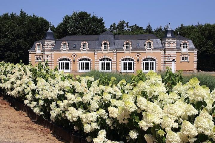 Demeure de prestige  dans la Vallée de la Loire