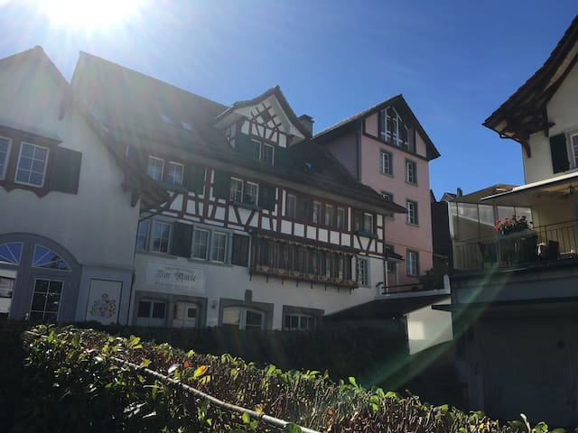 4 mins Thalwil station Parking Swiss history house - Thalwil - Huoneisto