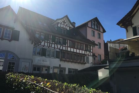 4 mins Thalwil station Swiss historical house - Thalwil