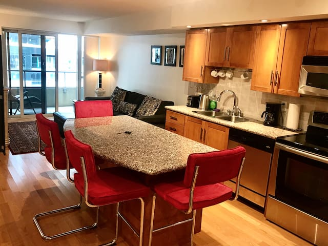 Private modern condo in the heart of DT Toronto!