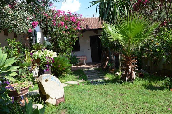 Villa Ibiscus - Santa Maria - Villa
