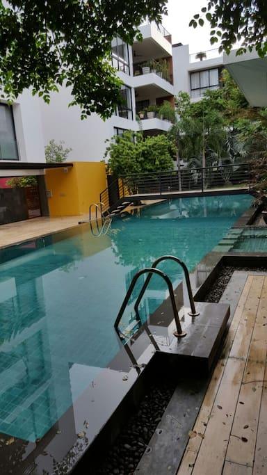 Common swimming pool, 20 m