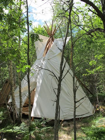 Cozy tipi in a small forest - Raasepori - Tipi