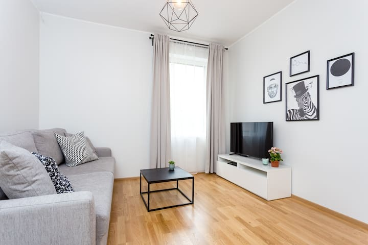 Brand new apt. next to the harbour and city center
