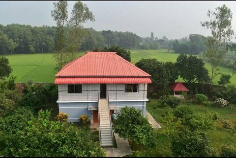 Enjoy Village life Near Gazipur