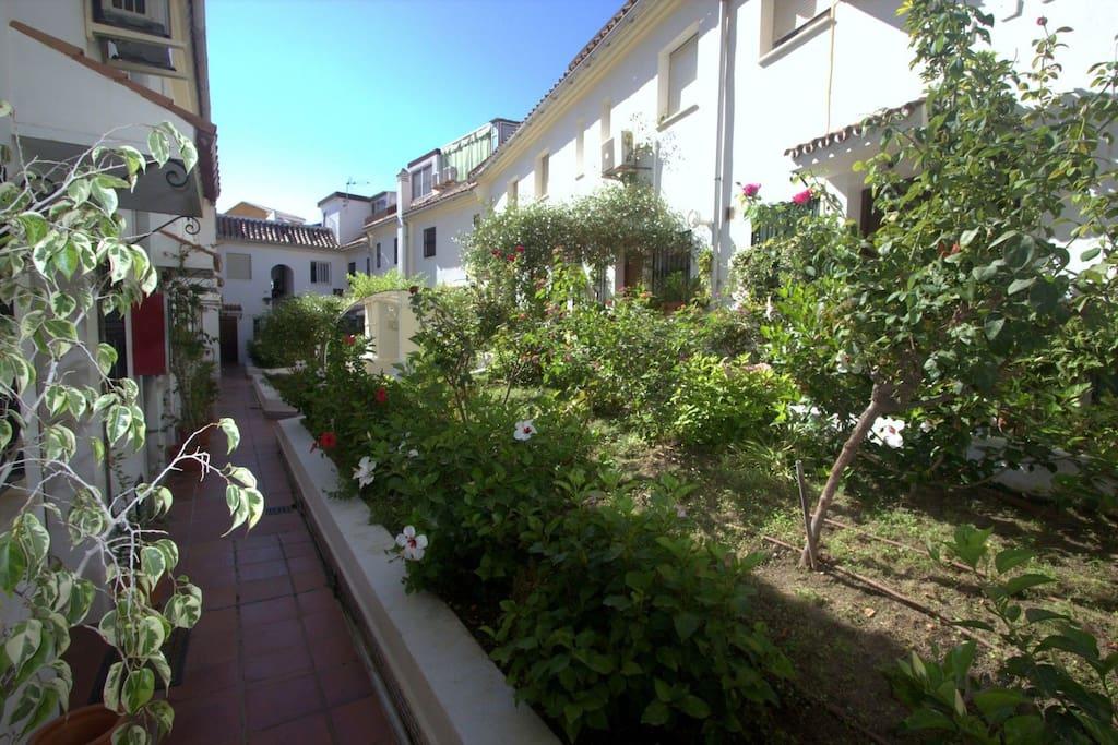 Community's courtyard / Patio comunitario