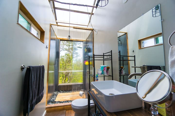 Bathroom with large standing shower and actual real toilet