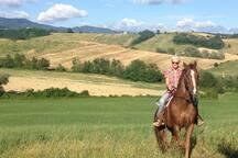Passeggiate in campagna
