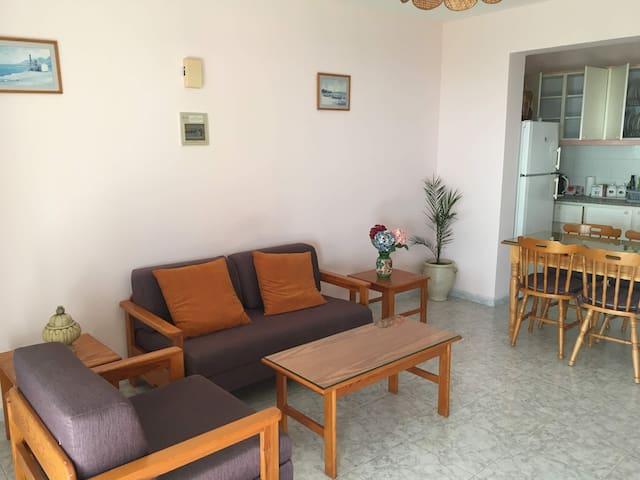 Ayia Zoni One Bedroom Apartment