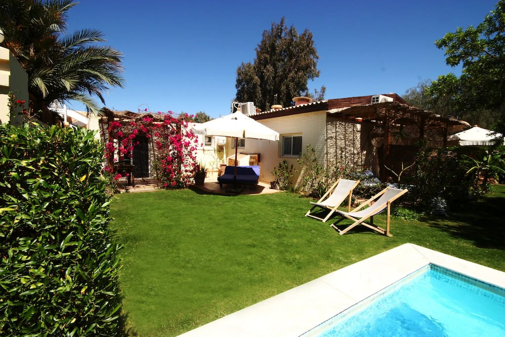 Seahorse apartment terrace with Jacuzzi pool view. Sunbeds, deck chairs and BBQ.