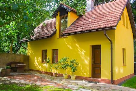 Domek w Świeradowie-Zdroju