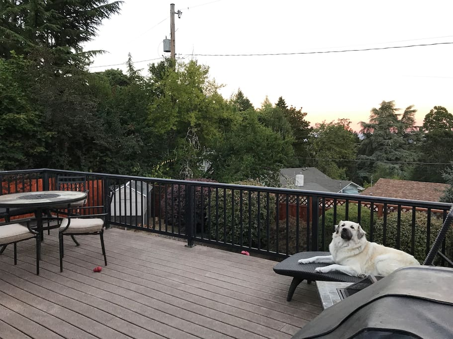 Back patio view with the sweet Scarlett, perfect for viewing the eclipse