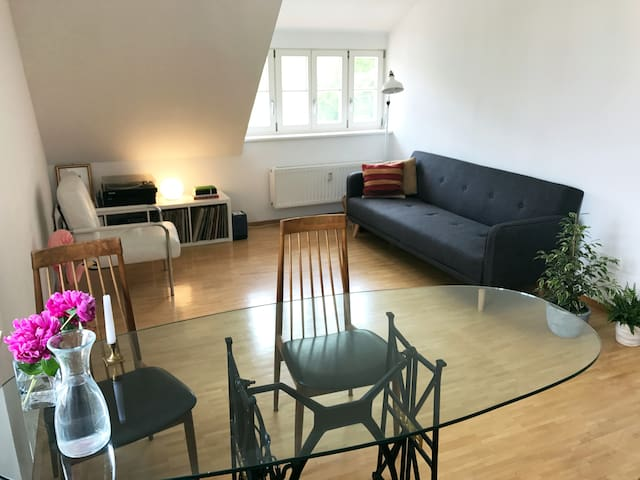 Cheerful apartment in central Tübingen - Tübingen - Apartment