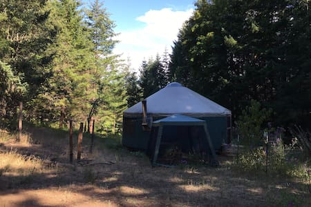 Glamping in a Peaceful Yurt tucked in the forest - White Salmon - Yurt
