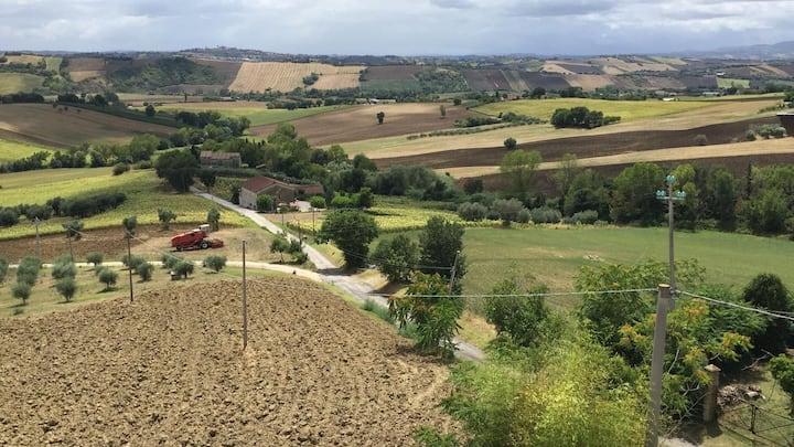 Relax e quiete tra le colline Marchigiane