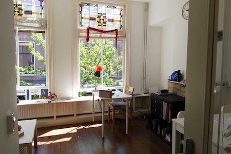 Bright apartment City center - Delft - House