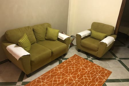 Newly furnished apartment in the heart of Portsaid