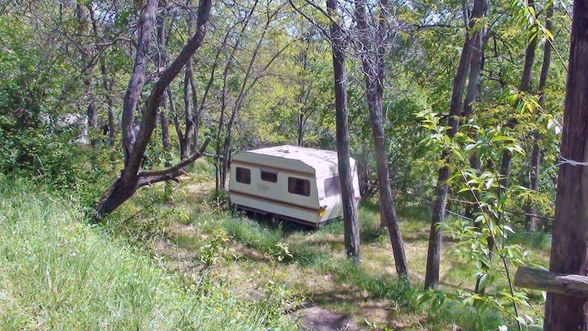 Caravane dans camping nature avec grande piscine