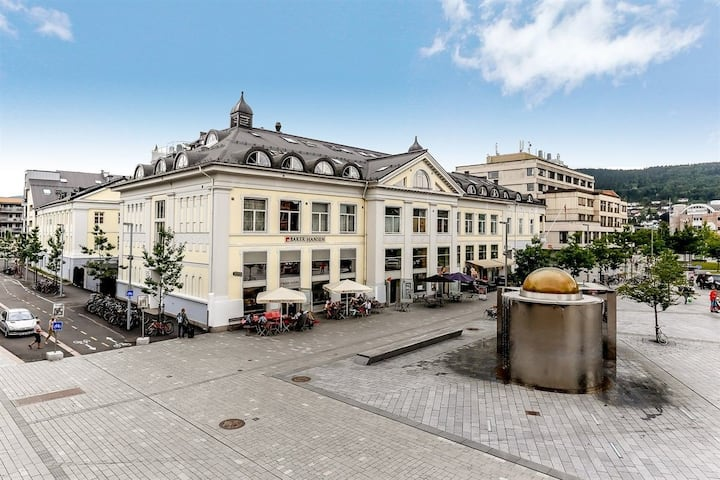 Leilighet midt i Drammen sentrum!